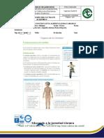 Guía y taller.doc