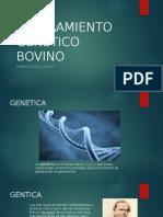 MEJORAMIENTO GENETICO CRUZAMIENTOS.pptx
