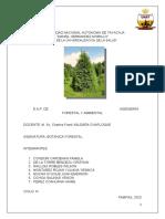 Grupo3 Pino Tax.impor.