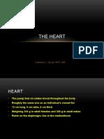 cardiovascular - heart.pptx
