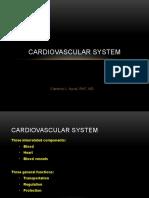 cardiovascular system - blood.pptx