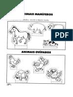animais_recortar