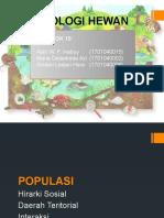 Populasi (Hirarki Sosial, Daerah Teritorial Dan Interaksi)