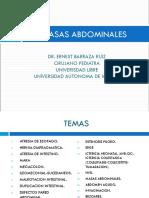 MASAS_ABDOMINALES._DADDY1.pdf