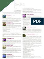 SPA MASAJE.pdf