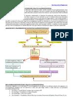 Infecciones del Tracto Gastrointestinal, Generalidades