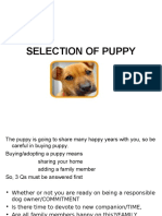 selection (1).ppt