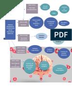 manual diagnostico y estadistico de los trastornos .Georghet Corredor