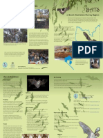 Bats Brochure SA Murray River Region