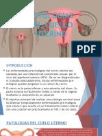 Patologias-del-cuello-uterino.pptx