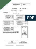 Formatos_clase_Tensión_Acero hecho.xlsx