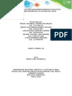 GRUPO 358006 28 Paso 5. Identificar los macro invertebrados en el agua