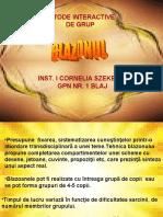 prezentareblazonul_neli (1).ppt