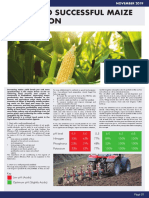 11 Keys to Successful Maize Production