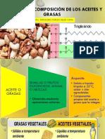 ESTRUCTURA Y COMPOSICIÓN DE LOS ACEITES Y GRASAS.pdf