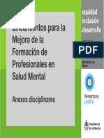 0000001248cnt-2018_conisma_lineamientos-mejora-formacion-profesionales-salud-mental_anexos-disciplinares