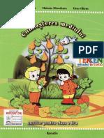 267110991-Auxiliar-cunoasterea-mediului.pdf