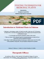 Harvesting Techniques of Medicinal Plants