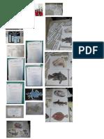 print manual(1)