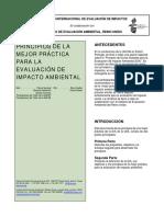 Principles of IA_span.pdf