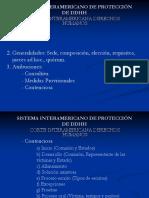 LECTURA OBLIGATORIA -Diapositiva   Corte IDH.pdf