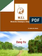 Pulmon Clase Zang Fu2