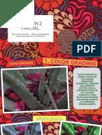 RETOQUE DIGITAL EXAMEN 3 PARCIAL.pdf