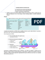 GLOMERULONEFRITIS POSTINFECCIOSA.docx
