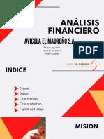 análisis financiero diapositivas.pdf
