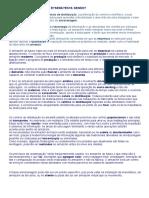 COMPLETE DE ARMAZENAGEM  Como será - BRUNA CHIQUETI.doc