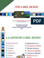 LA GENETICA DEL SEXO.ppt