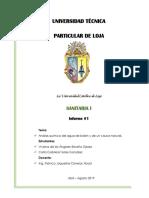 Informe_1_Análisis Químico_BIEN