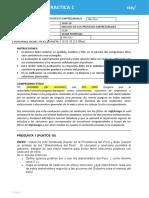 PRACTICA VIRTUAL 1 NRC 1126 (11)