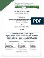 magister Yahiaoui.pdf