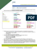 Pasos POLIGONOS.pdf