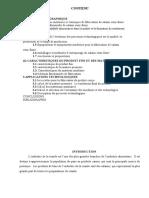 REDACTARE_TEZA_12.05.2020_Daniela_REDACTATA-fr.docx