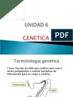 UNIDAD 6-  GENETICA