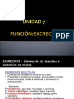 REPRODUCCIÓN y EXCREC 2011.ppt