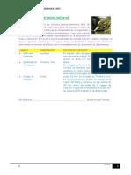Ejercicio 05-Tablas