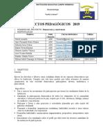 2019C H PROYECTO OBLIGATORIO DEMOCRACIA EN CONSTRUCCION