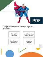 Sistem Saraf Perifer.pptx