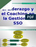 2.- El Liderazgo y el Couching en la Gestion de SSO