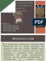 ESTUDIO DE PREFACTIBILIDAD PARA LA ELABORACIÓN DE HARINA