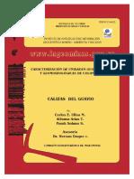 Catalogo_Calizas_Guavio.pdf