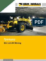 BG-110-M_russisch.pdf