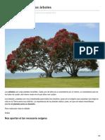 jardineriaon.com-La importancia de los árboles.pdf