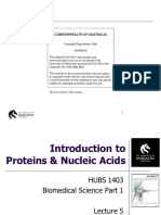 HUBS1403 - Biomedical Science 1 - Lecture 5. Proteins and Nucleic Acids