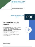 2.- Intervención -impedimentos-condicionesy responsabilidad de Perito