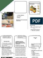 triptico patologia.docx