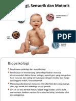 Biopsikologi, Sensorik dan Motorik
